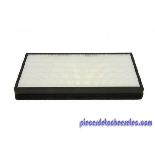 filtre hepa pour purificateur d 39 air intense pure air ii. Black Bedroom Furniture Sets. Home Design Ideas